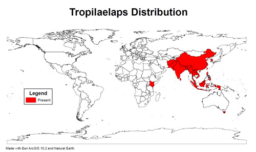 Present distribution of Tropilaelaps reported in peer-reviewed scientific literature.