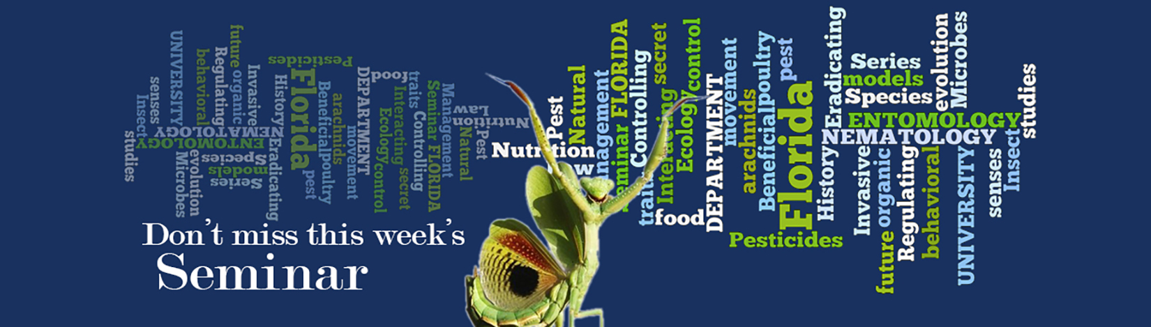 link to seminars page, image of praying mantis with words background