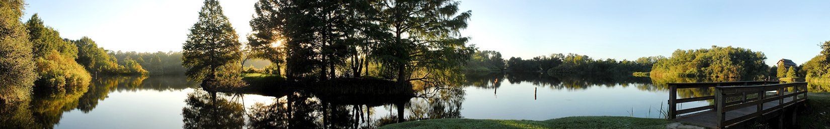 Lake Alice on the UF campus, Gainesville, Florida