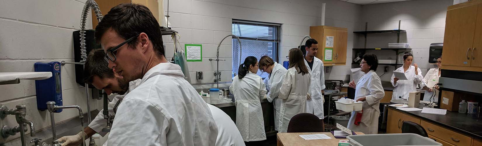 students and faculty working in the laboratory